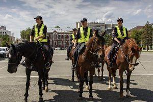 Факты о ликвидации конной полиции  Волгодонска