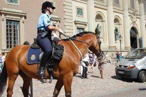 В Швеции конная полиция разогнала антифашистов